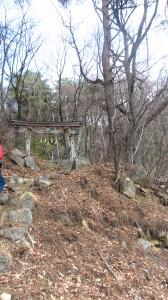 山城の険しき隘路若葉避けゆく