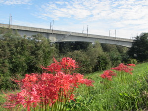 東北新幹線の阿武隈川橋梁